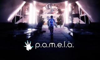 Постер P.A.M.E.L.A.
